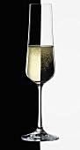 A glass of Sekt (German sparkling wine), black & white