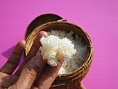 Hand with cooked sticky rice