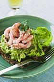 Rye bread with avocado cream and shrimps
