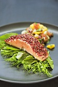 Salmon with pepper crust on salad leaves and mango salsa