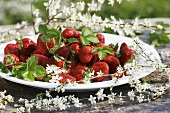 Fresh strawberries on a plate surrounded by sloe blossom