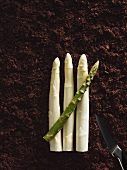 White and green asparagus on soil