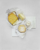 Various types of cheese on paper