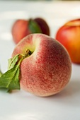 A peach with nectarines in the background