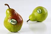 Zwei Bio-Birnen