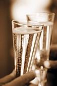 Mit Champagnerflöten anstossen