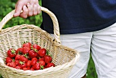 Person carrying a basket of fresh strawberries