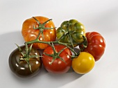 Different tomatoes on the same truss