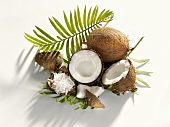 Whole and halved coconut and grated coconut