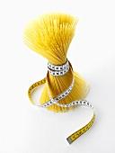 Spaghetti with tape measure