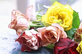 Bunch of different coloured roses