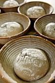 Bread dough in baskets
