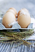 Fresh eggs in egg box surrounded by hay