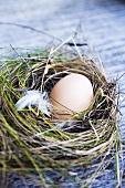 Fresh eggs in nest of hay