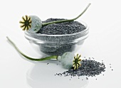 Poppy seed capsules and poppy seeds