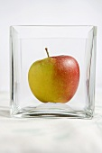Apple in a glass