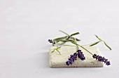Lavender flowers on stone
