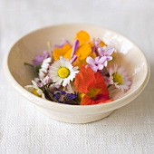 Assorted edible flowers in a ceramic dish