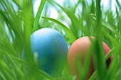Two Easter eggs in grass