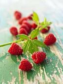Raspberries with raspberry leaves