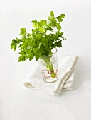 Fresh parsley in a glass of water on a tea towel