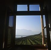 View of Castel Ringberg, Elena Walch Winery, S. Tyrol