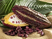 Cacao fruit with beans and leaf