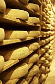 Comté cheese in cheese cellar