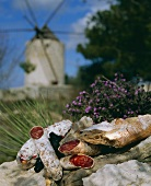 Salami, olives and bread lying on a wall