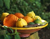 Various citrus fruits in a bowl