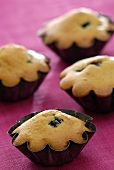 Four blueberry muffins in muffin cases