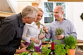 Kitchen scene: a woman and two men examining fresh herbs