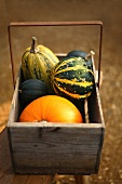 Assorted squashes and pumpkins in a wooden basket
