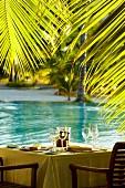 Gedeckter Tisch unter Palmen am Meer (Seychellen)
