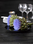 Artichoke flowers on black plate