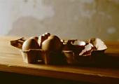 Eierkarton mit braunen Eiern und Eierschalen