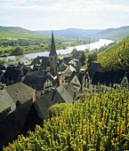 View towards Ürzig, Upper Mosel, Mosel-Saar-Ruwer, Germany