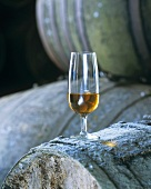 Amontillado in sherry glass on old wine barrels
