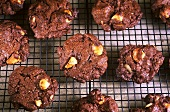 Macadamia nut chocolate cookies