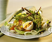 Salad leaves with vegetables, eggs & vinaigrette au pesto rosso