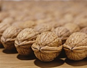 A large number of walnuts