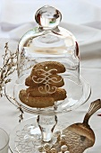 Vanilla crescents under a glass dome on a glass stand