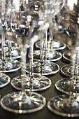 Many empty wine glasses