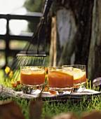 Tomato juice with slices of orange