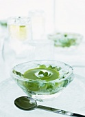Chilled basil soup