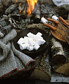 Marshmallows and sausages on sticks by open fire