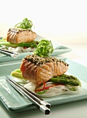 Salmon with sesame crust on asparagus and rice noodles