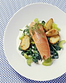 Salmon trout with young spinach, celery and potatoes