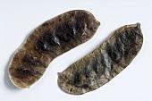 Senna pods (Fructus sennae)