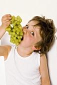Kleiner Junge beisst in Weintrauben
